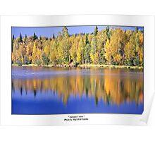 """""""Autumn Colors"""" Poster"""