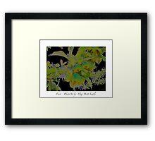 """""""Fruit"""" Framed Print"""