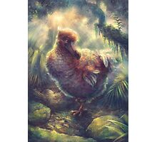 Dodo the Great Pigeon Photographic Print