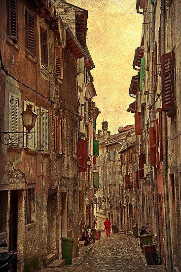 Back Street. Rovinj. Croatia. by vadim19