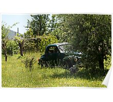 Amalfi Orchard Poster