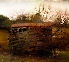 Vieja Barn by Kelly J  Parsons