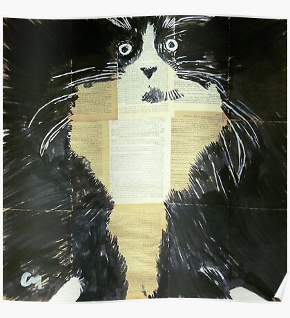 Nocturnal cat. Poster