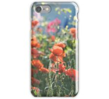 Evening Lights the Poppies iPhone Case/Skin