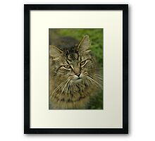 King Arthur Framed Print