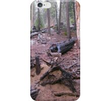 babes in the wood iPhone Case/Skin