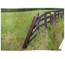 Resting Fence Poster