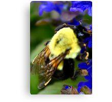 Happy To Bee Me Canvas Print