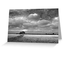 Scary Tree - Wilmington Wheat Field Greeting Card