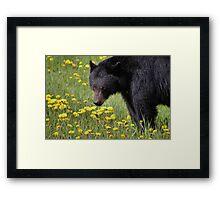 Dandelion Buffet Framed Print
