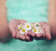 Share a Daisy or 2 by kamieo