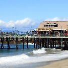 Redondo Beach Pier 1113 by eruthart