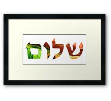 Shalom 17 - Jewish Hebrew Peace Letters Framed Print