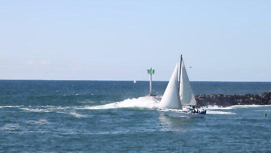Sailboat 1164 by eruthart
