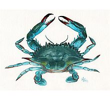 Blue Crab Watercolor Photographic Print