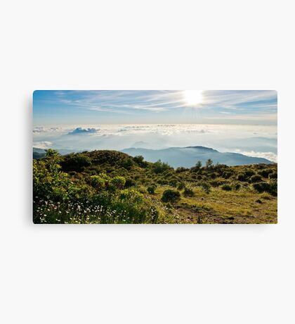 View from the sumit of Tatamailau (Mount Ramelau), Timor-Leste Canvas Print