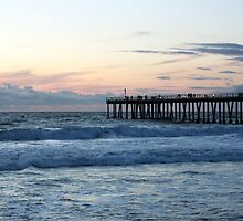 Hermosa Beach Pier 1240 by eruthart