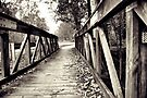 Foot Bridge II by Sonja Wells