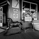 Rocking horse memories by Chris Dowd