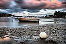 Saturday Evening  by Matt Penfold