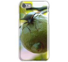 lemon invasion iPhone Case/Skin