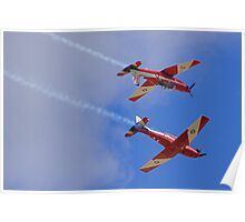 Upsidedown Roulettes Poster