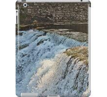 Summer Falls iPad Case/Skin