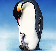 Emperor penguin with chick by hartpix
