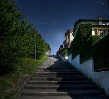 Step by step by Davide Ferrari