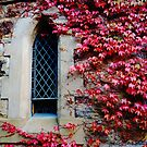 Church in Autumn by Meg Hart