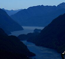 Doubtful Sound by Ian Sanders
