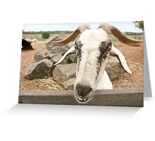 Goofy The Goat Greeting Card