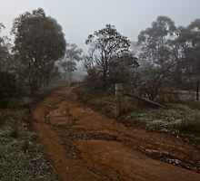 Winter Morning Fog at the Pinnacle in Canberra/ACT/Australia (2) by Wolf Sverak