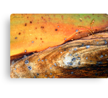 Whist 'n Weary Canvas Print