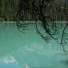 Emerald lake - Red Canoe by JimSanders