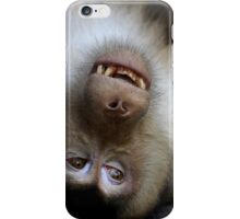 Not A Care In The World: Pig-tailed Macaque Portrait, Borneo  iPhone Case/Skin