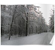 White as Snow Poster