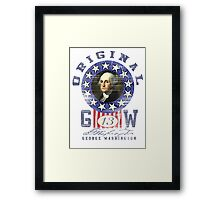 george washington Framed Print