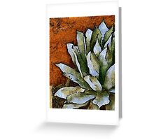 Agave Against a Red Wall Greeting Card