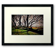 Morning Shadows at Jordan Pond House Framed Print