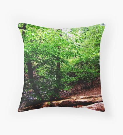 This is NYC Throw Pillow