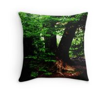 Robin Hoods first home Throw Pillow