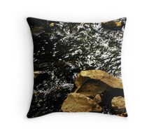 slow ebb and flow Throw Pillow