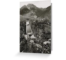 Fountain, Sent Switzerland Greeting Card