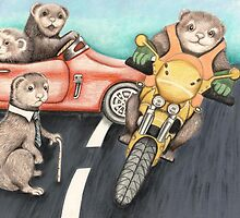 Ferrets in the fast lane by Margaret Sanderson