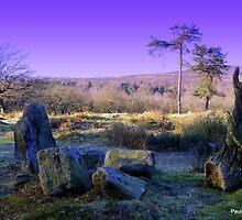 Pretty prehistoric by Paula Walker