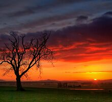 Sunrise, Carse of Stirling... by David Mould