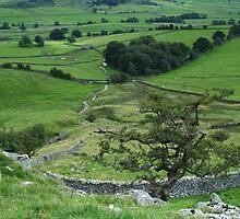 Limestone Country by WatscapePhoto