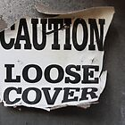 Loose Cover by Rivere Thomas