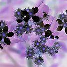 Bursts by Sunshinesmile83